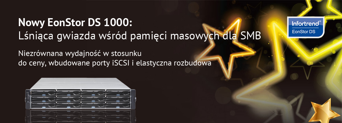 Infortrend DS1000